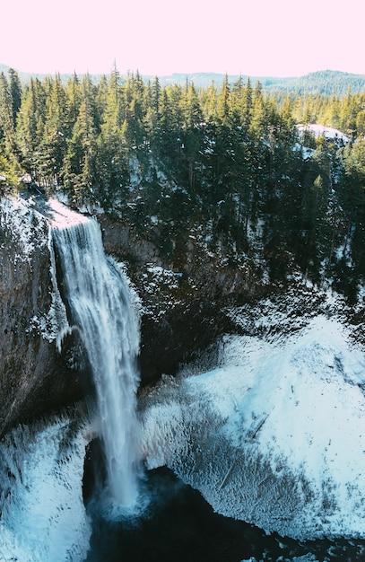 Verticale opname van een prachtige waterval en een bos in de winter Gratis Foto