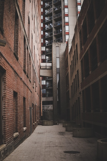 Verticale opname van een smal steegje tussen bakstenen gebouwen en een hoogbouw Gratis Foto