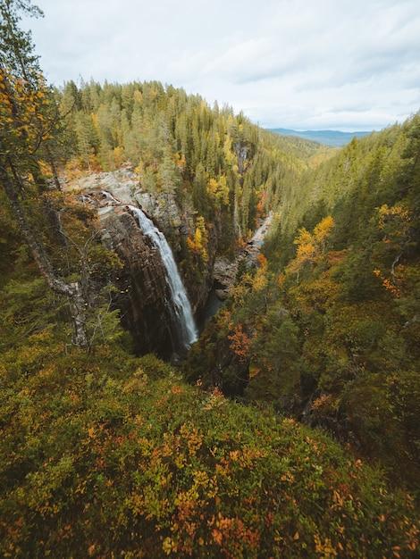 Verticale opname van een waterval omringd door veel bomen met herfstkleuren in noorwegen Gratis Foto