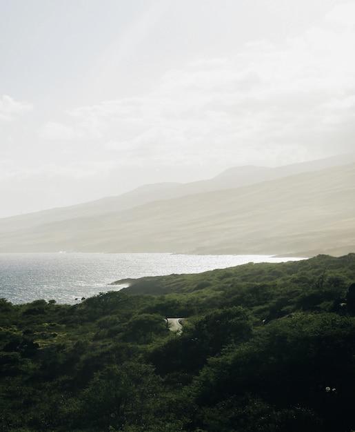 Verticale shot van een zee omgeven met bergen bedekt met bomen Gratis Foto