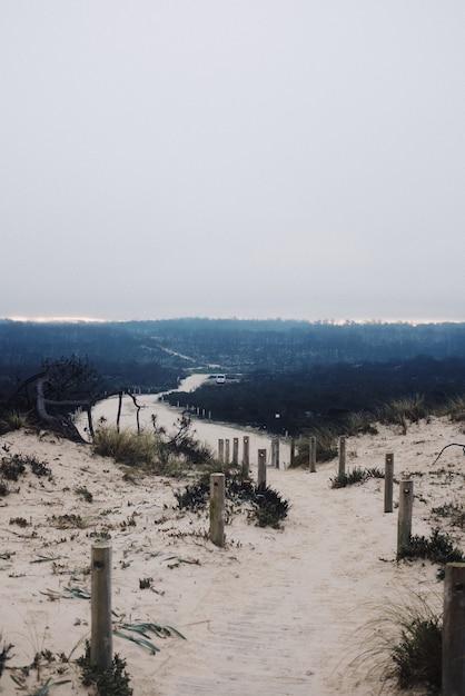 Verticale weergave van een klein pad in de duinen onder een bewolkte sombere hemel Gratis Foto