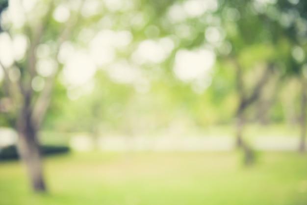 Vervagen natuurlijke groene abstracte achtergrond Premium Foto