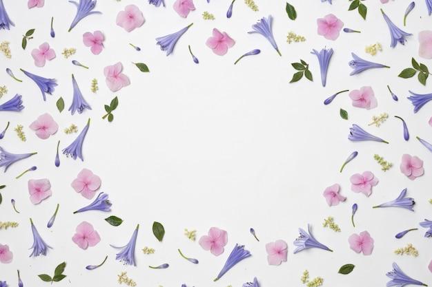 Verzameling van prachtige violette bloemen en groen blad Gratis Foto