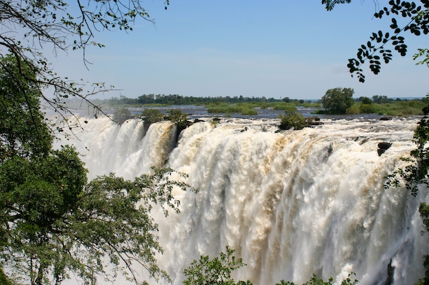 Victoria valt in zimbabwe Premium Foto
