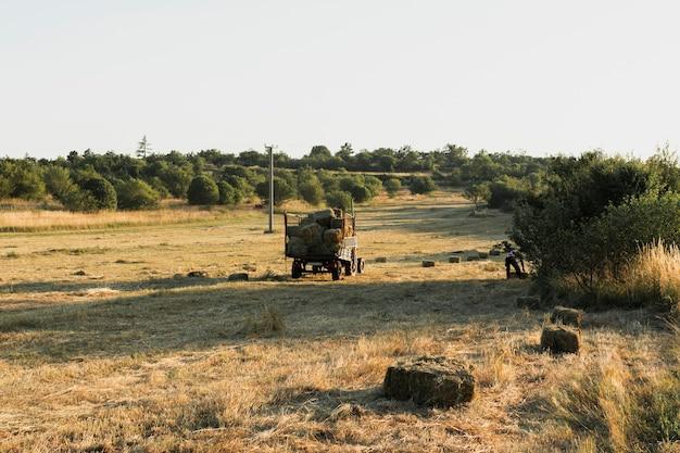 Vierkante strobalen in een geoogst maïsveld Gratis Foto