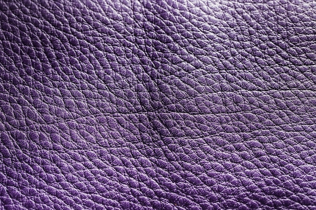 Violet leder textuur achtergrond oppervlak Gratis Foto