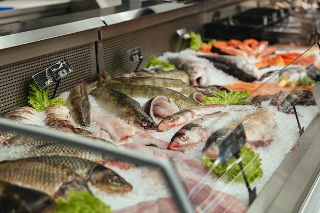 Vitrine met rauwe vis Gratis Foto