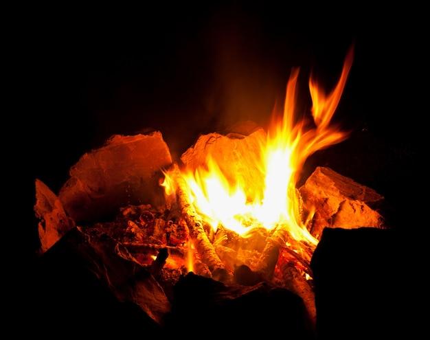 Vlam vuur op zwarte nacht. Premium Foto