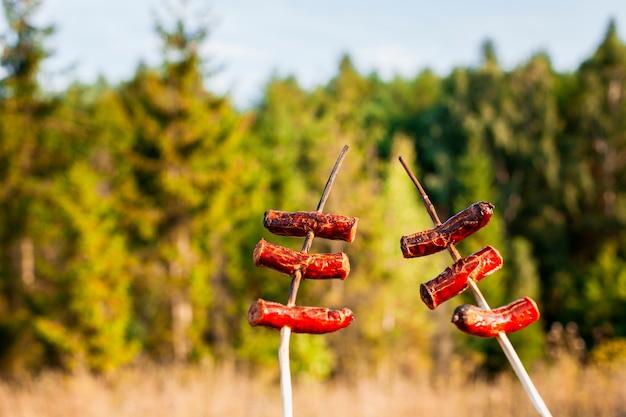 Vleespennen van worsten en vaag bos op achtergrond Gratis Foto