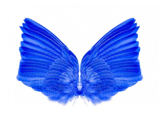 Vleugels geïsoleerd op wit. Premium Foto