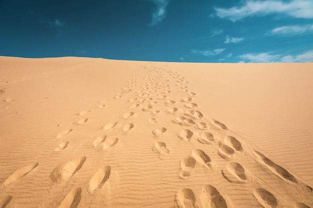 Voetstappen in de duinen van pyla, frankrijk Premium Foto