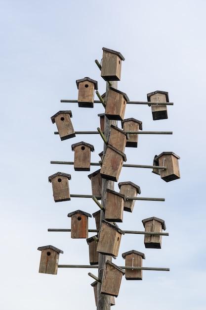 Vogelhuisjes bevestigd aan een houten paal Gratis Foto