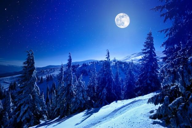 Volle maan over winter diep bos bedekt met sneeuw op winternacht Premium Foto