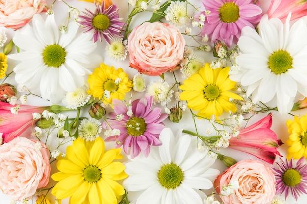 Volledig kader van verse chrysanthemum; kamille; roos; baby's adem en alstroemeria Gratis Foto