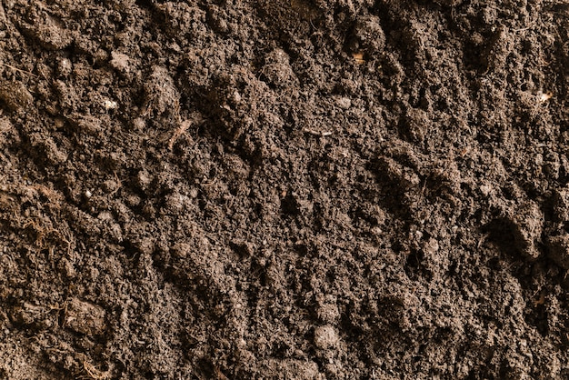 Volledig kader van vruchtbare grond Gratis Foto