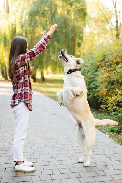Volledige show labrador spelen met vrouw Gratis Foto