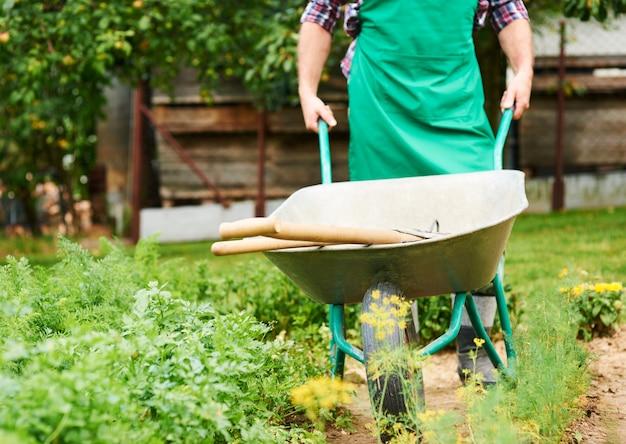 Volwassen man metalen kruiwagen tussen gewassen te duwen Gratis Foto