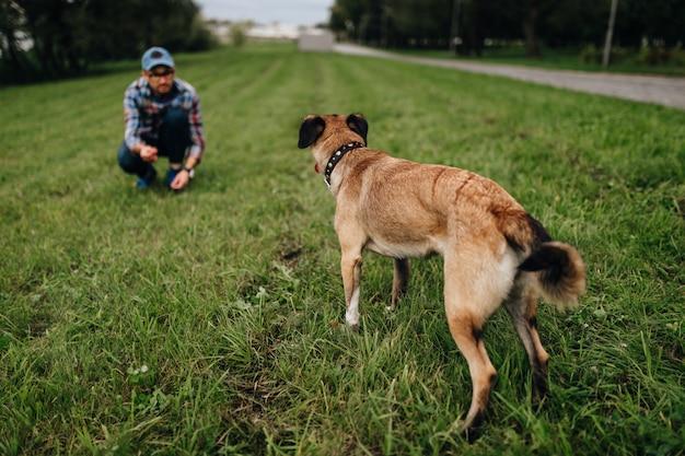Volwassen stijlvolle man spelen met huisdier. familie buiten. dierenliefhebber. gelukkige hond die van vrijheid geniet. terrier fokpup veel plezier met de eigenaar. harige gekke hondentraining in de natuur. vrienden samen. Premium Foto