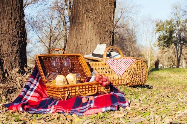 Vooraanzicht picknickmanden vol met goodies Gratis Foto