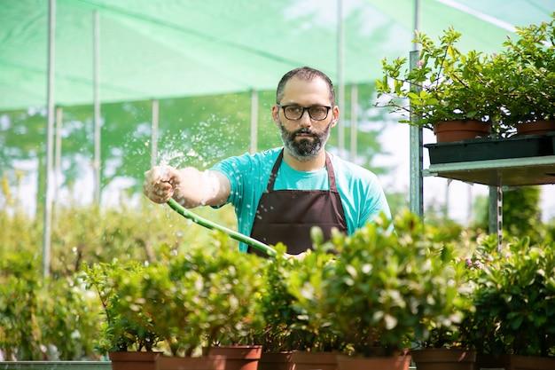 Vooraanzicht van man drenken potplanten uit slang. geconcentreerde tuinman op middelbare leeftijd in schort en oogglazen die in serre en groeiende bloemen werken. commerciële tuinieren activiteit en zomerconcept Gratis Foto