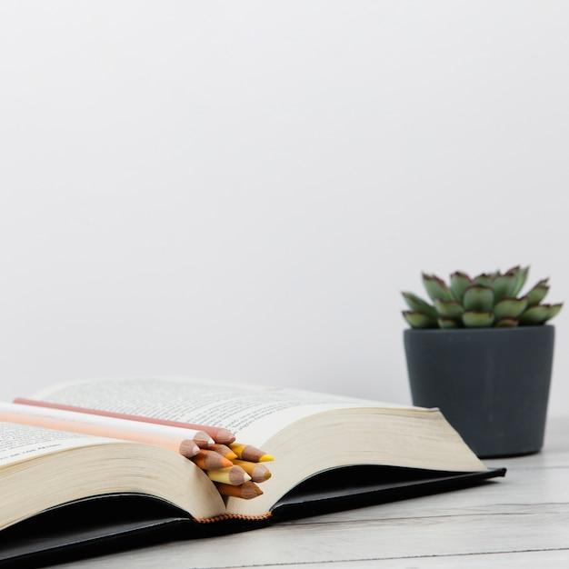 Vooraanzicht van open boek op effen achtergrond met kopie ruimte Gratis Foto
