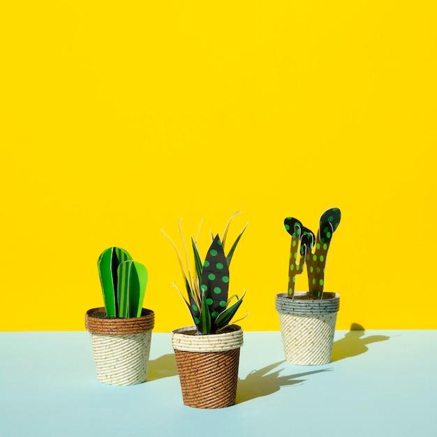 Vooraanzichtregeling van cactussen op gele achtergrond Gratis Foto