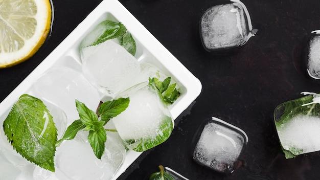 Vorm voor ijs en ijsblokjes met munt Gratis Foto