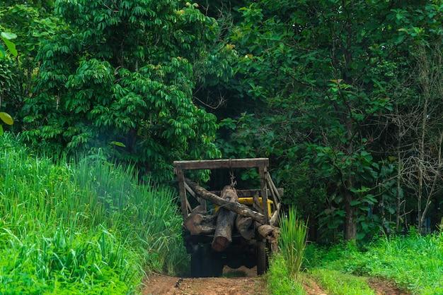 Vrachtwagens voor de bosbouwindustrie. Premium Foto
