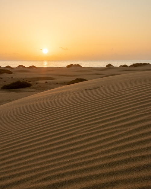 Vroege ochtendzonsopgang in de duinen van maspalomas Gratis Foto