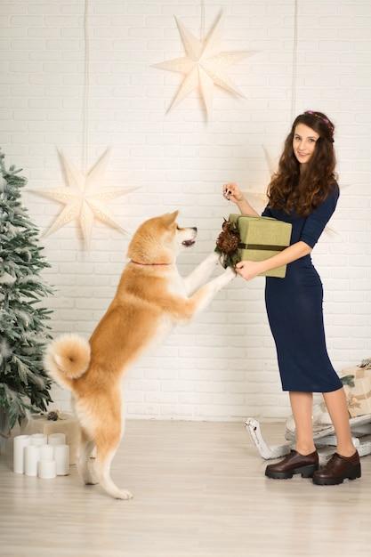 Vrolijk kerstfeest en een gelukkig nieuwjaar! het meisje geeft kerstcadeau in doos aan haar hondenras akita inu Premium Foto