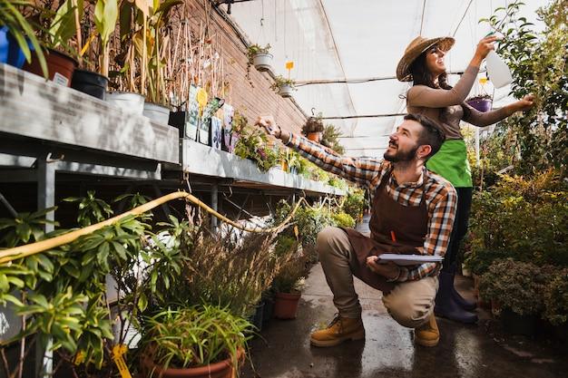 Vrolijke tuinlieden die in serre werken Gratis Foto
