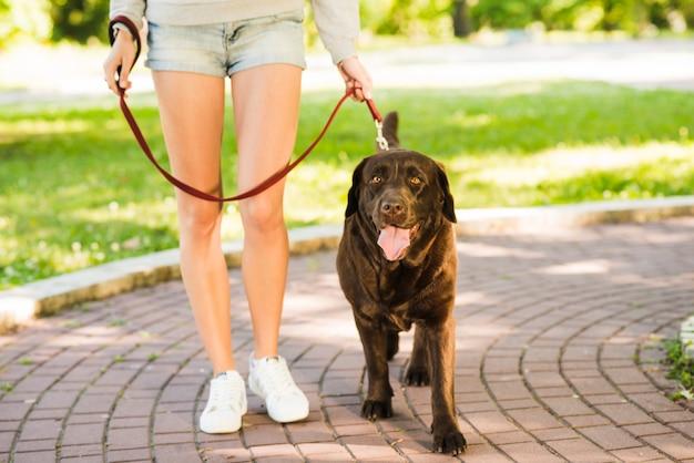 Vrouw die met haar hond in tuin loopt Gratis Foto