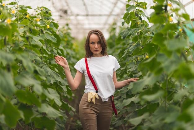 Vrouw het verzorgen van planten in een kas Gratis Foto