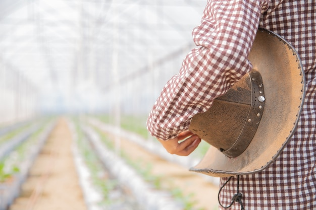 Vrouw wetenschap assistent, landbouwofficier. in de meloen van het broeikasbedrijfonderzoek Gratis Foto