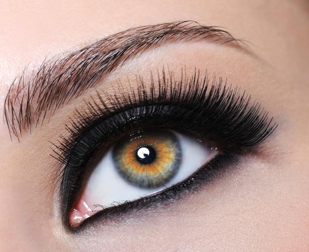 Vrouwelijk oog met heldere zwarte make-up en lange wimpers Gratis Foto