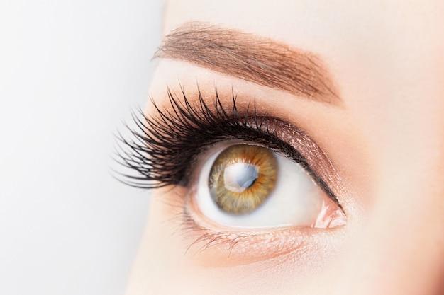 Vrouwelijk oog met lange wimpers, mooie make-up en lichtbruin wenkbrauwclose-up. wimper extensions, lamineren, microblading, cosmetologie, oogheelkunde concept. goed zicht, heldere huid Premium Foto