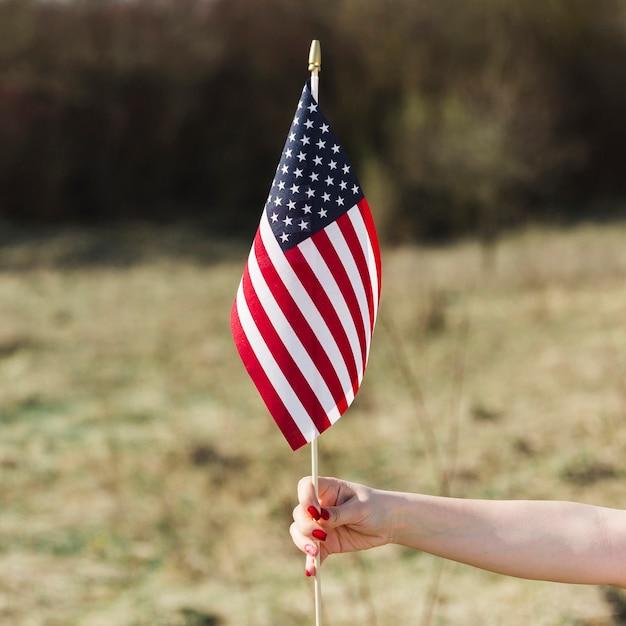 Vrouwelijke hand met vs vlag tijdens independence day Gratis Foto