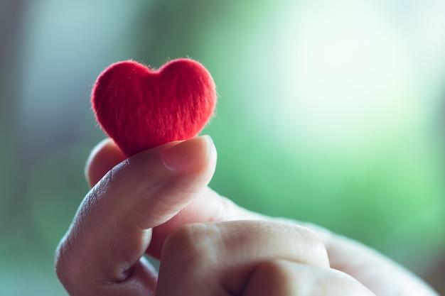 Vrouwelijke handen die een klein rood hart, het concept van de dag van de valentijnskaart houden Premium Foto