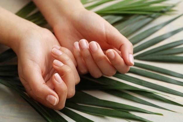 Vrouwelijke handen. huidverzorging en manicure concept Gratis Foto