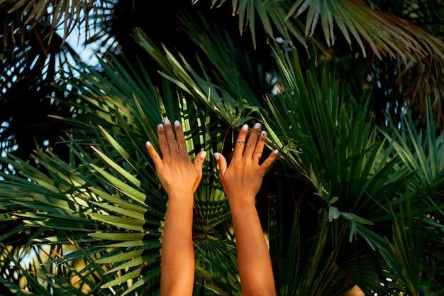 Vrouwelijke handen op het achtergrondpalmenblad. zomerstemming. Premium Foto