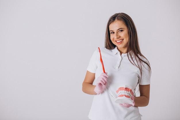 Vrouwelijke tandarts met geïsoleerde tandheelkundethulpmiddelen Gratis Foto