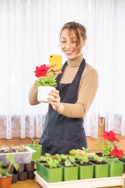 Vrouwelijke tuinman maakt foto van bloeiende plant bloeiende petunia op mobiele telefoon Premium Foto