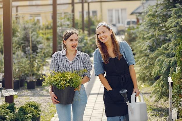 Vrouwen die in een kas werken met bloempotten Gratis Foto
