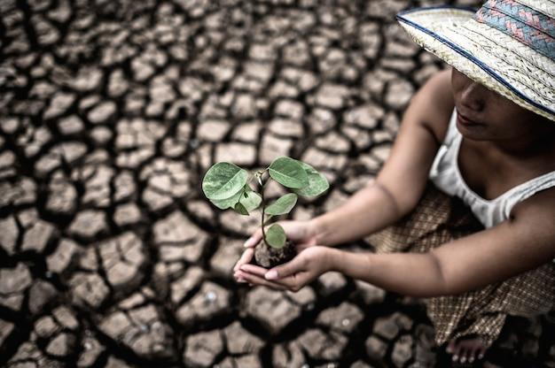 Vrouwen zitten met zaailingen in droog land in een verwarmende wereld. Gratis Foto