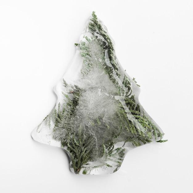 Vuren naalden in ijs in de vorm van een kerstboom Gratis Foto