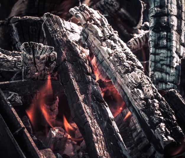 Vuur, vlammen van houtskool voor grill of bbq picknick, rook en brandhout buiten Gratis Foto