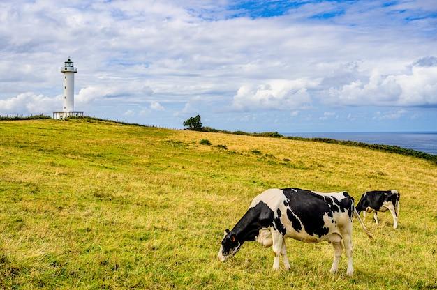Vuurtoren van lastres asturië, spanje Premium Foto