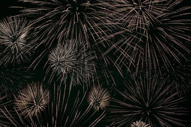 Vuurwerk verlicht de lucht, de viering van de onafhankelijkheidsdag. nachtshow. dag van de overwinning. feestelijk vuurwerk. nieuwjaarsavond. decoraties voor een feestelijk feest. amerikaanse feestdag. dag van canada. Premium Foto