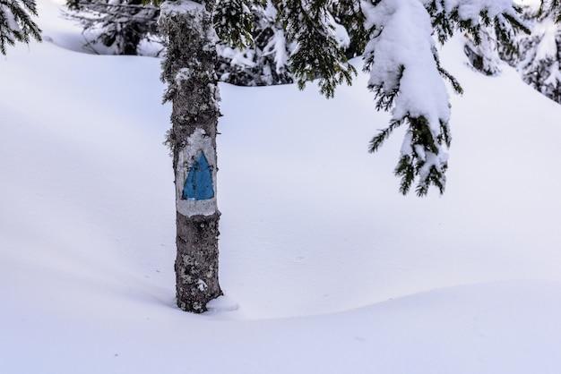 Wandelpad teken. blauw toeristenteken in bergweg in grote sneeuw. Premium Foto
