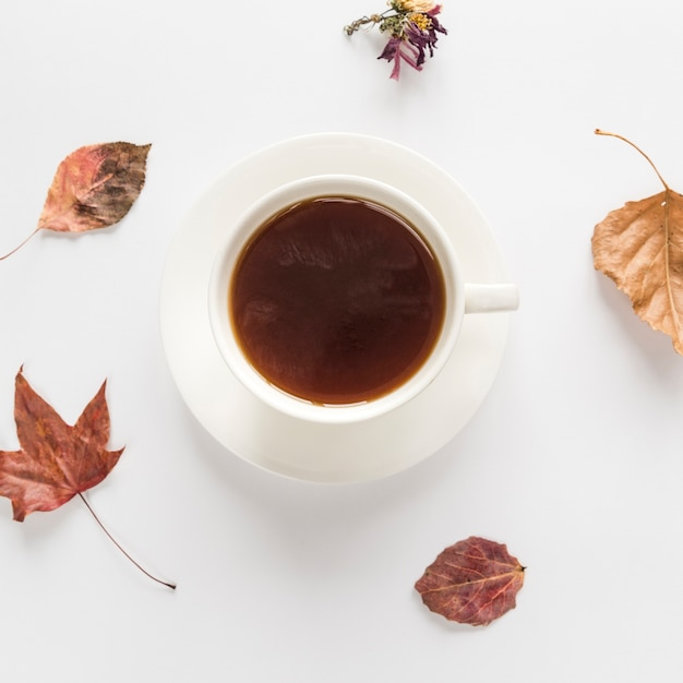Warme drank met droge bladeren op wit oppervlak Gratis Foto